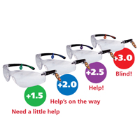 CatEyes Safety Glasses